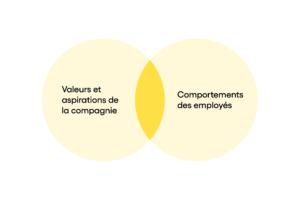 Diagramme Fit culturel fit entre valeurs et aspirations de la compagnie et comportements observés chez les employés